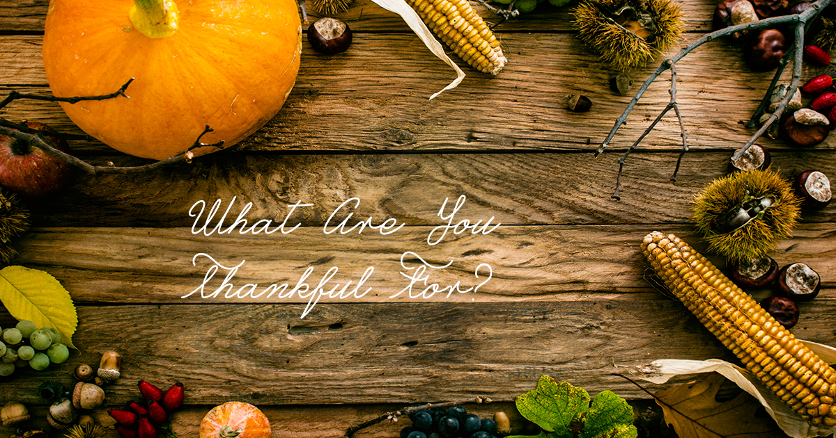 What are we thankful for this year?
